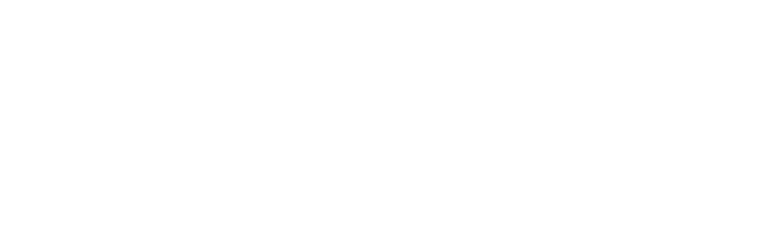 The Amplifier Group